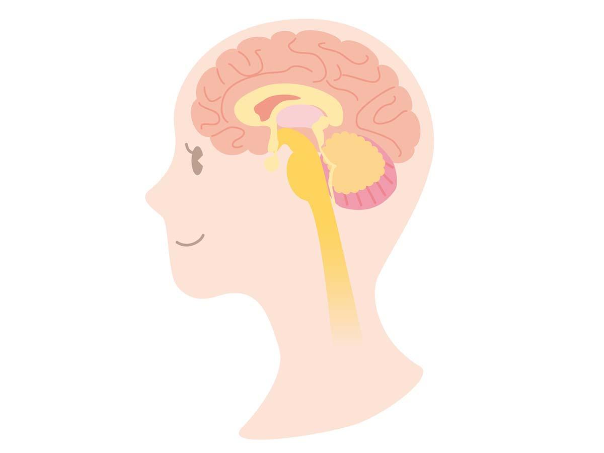 カルシウム不足でアルツハイマー病になる